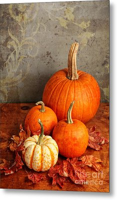 Metal Print featuring the photograph Fall Pumpkin And Decorative Squash by Verena Matthew