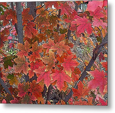 Fall Red Metal Print by David Pantuso