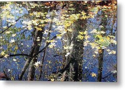 Metal Print featuring the photograph Fall Reflections by I'ina Van Lawick