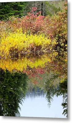 Fall Reflections Metal Print by Sylvia Hart