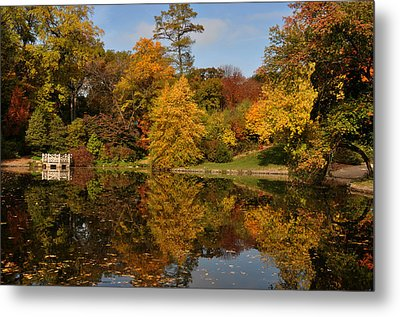 Fall Trees In Mirror Image Metal Print by Diane Lent