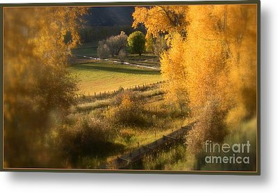 Fall View Metal Print
