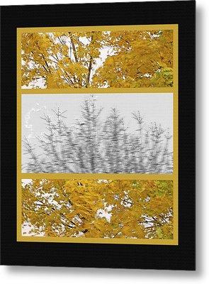 Fall Wind Triptych Metal Print by Steve Ohlsen