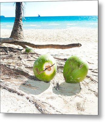 Fallen Coconuts Metal Print