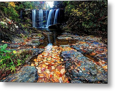 Metal Print featuring the photograph Fallen Leaves by Doug McPherson