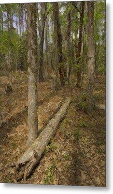 Fallen Tree In Forest Metal Print by M K  Miller
