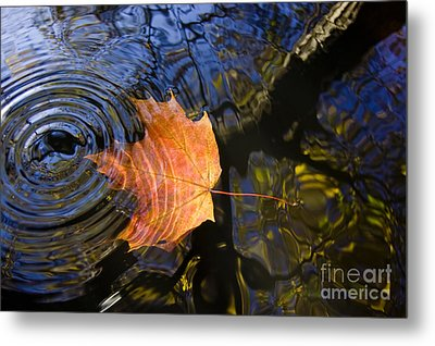 Falling To The Water Metal Print by Michal Boubin