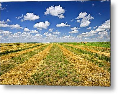 Farm Field At Harvest In Saskatchewan Metal Print by Elena Elisseeva