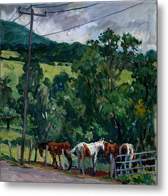 Farm Horses Berkshires Metal Print by Thor Wickstrom