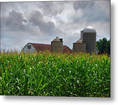Farm Landscape Metal Print by Ms Judi