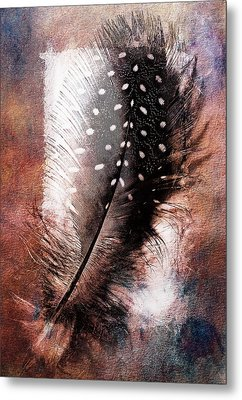 Feather Metal Print by Mauro Celotti