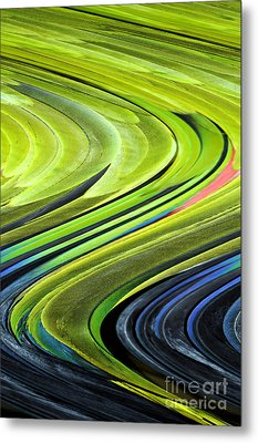 Feathers Metal Print by Shirley  Taylor