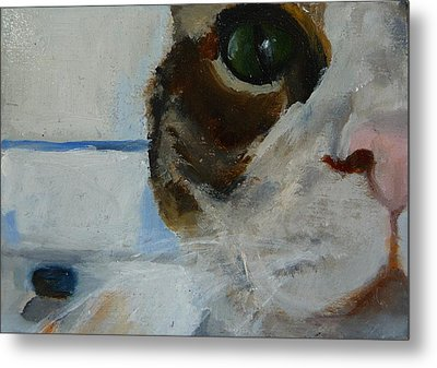 Metal Print featuring the painting Feed Me Now by Jessmyne Stephenson