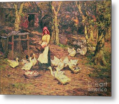 Feeding The Ducks Metal Print by Joseph Harold Swanwick