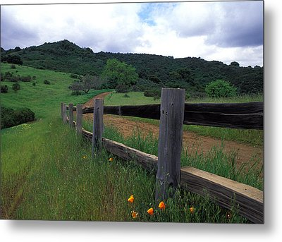 Fence And Poppies Metal Print by Kathy Yates