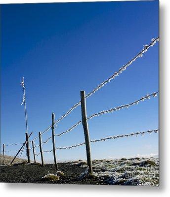 Fence Covered In Hoarfrost In Winter Metal Print by Bernard Jaubert