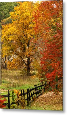 Fence In Autumn Metal Print by Randall Branham