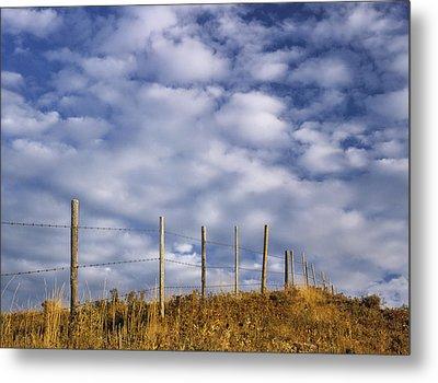 Fenceline In Pasture With Cumulus Metal Print by Darwin Wiggett