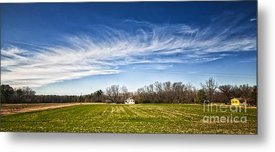 Field And Sky Metal Print