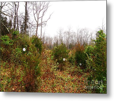 Field Of Dreaminess Metal Print