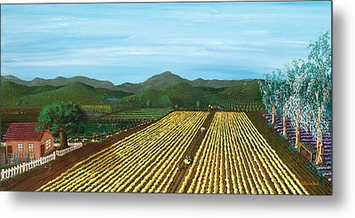Field Of Yarrow-that's A Flower Metal Print by Katherine Young-Beck