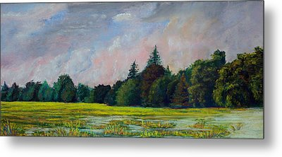 Fields Mid-storm Metal Print by Peter Jackson