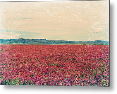 Fields Of Heaven Metal Print by Leanna Lomanski