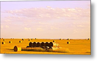 Fields Of Plenty Metal Print by Kate Purdy