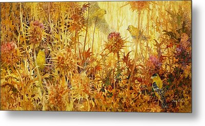 Finch Feast Metal Print by Floy Zittin