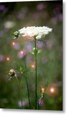Metal Print featuring the photograph Fine Lace And Fairies by Penny Hunt