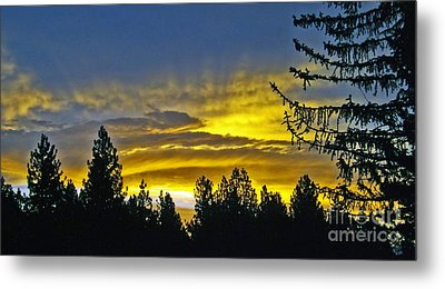 Metal Print featuring the photograph Firey Sunrise by Gary Brandes