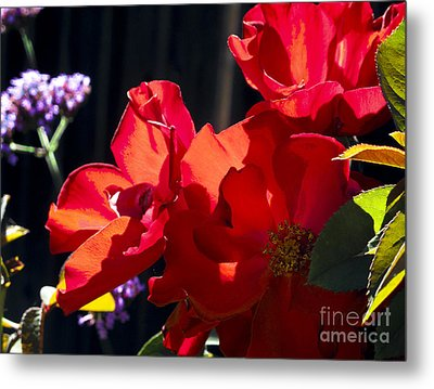 First Blooms Metal Print
