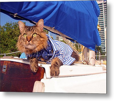 Metal Print featuring the photograph First Mate by Joann Biondi
