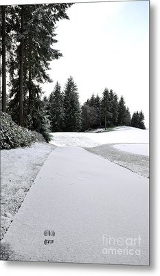 First Snow 10 Metal Print by Tanya  Searcy