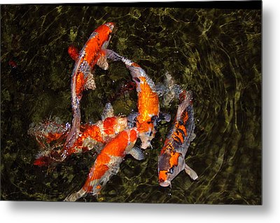 Fish Game Metal Print by Viktor Savchenko