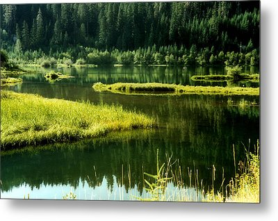 Fishing The Still Water Metal Print