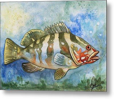 Fishy Fishy Metal Print