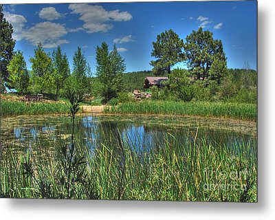 Metal Print featuring the photograph Flagstaff by Tam Ryan
