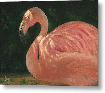 Flamingo In Dappled Light Metal Print by Joe Winkler