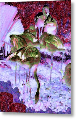 Flamingotasia Metal Print