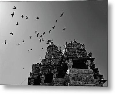 Flight Of Birds Above Jadgish Temple Metal Print by Prashanth Naik