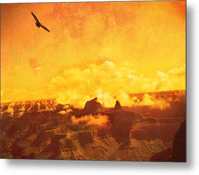 Metal Print featuring the photograph Flight Over Grand Canyon by James Bethanis