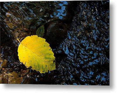 Floating Down The River Metal Print by Sheri Van Wert