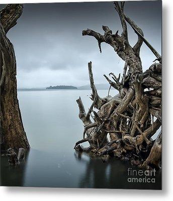 Floating Island Metal Print by Michael Howard