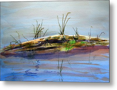 Floating Log Metal Print