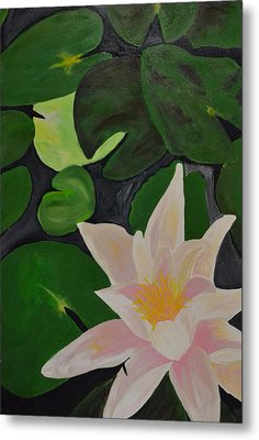 Floating Lotus 2 Metal Print by Holly Donohoe