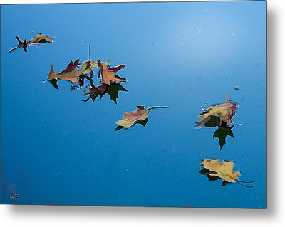 Floating On The Sky Metal Print by Michael Flood