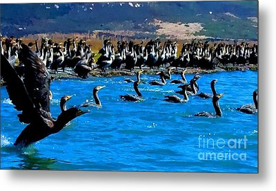 Flock Metal Print by Tap On Photo