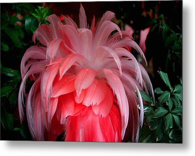 Metal Print featuring the photograph Flora And Fauna Number Two by Lon Casler Bixby