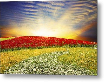 Floral Field On Sunset Metal Print by Setsiri Silapasuwanchai
